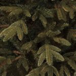 Black Box Treeskerstboom Nebraska H230D140 Blauw Tips 2004