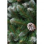 Triumph Tree Empress kunstkerstboom frosted maat in cm: 90 x 61 groen